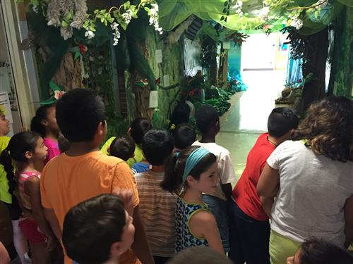 The Grand Opening of the Rainforest Exhibit!