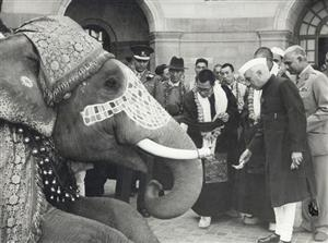 Nehru and Dalai Lama and Elephant