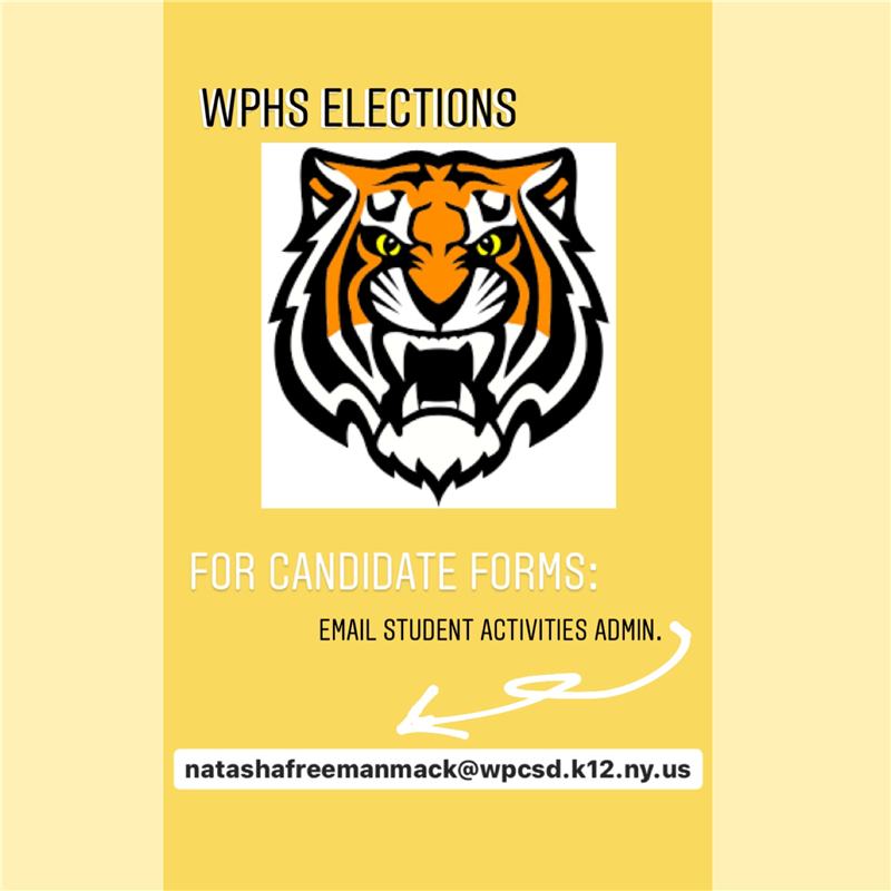 WPHS Elections for Candidate Video, Forms and Email Student Activities Administrator Natasha Freeman Mack
